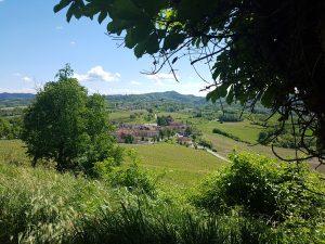vue du Monferrato dans le piemont