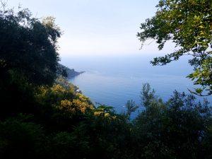 Vue sur la mer a punta chiappa ligurie