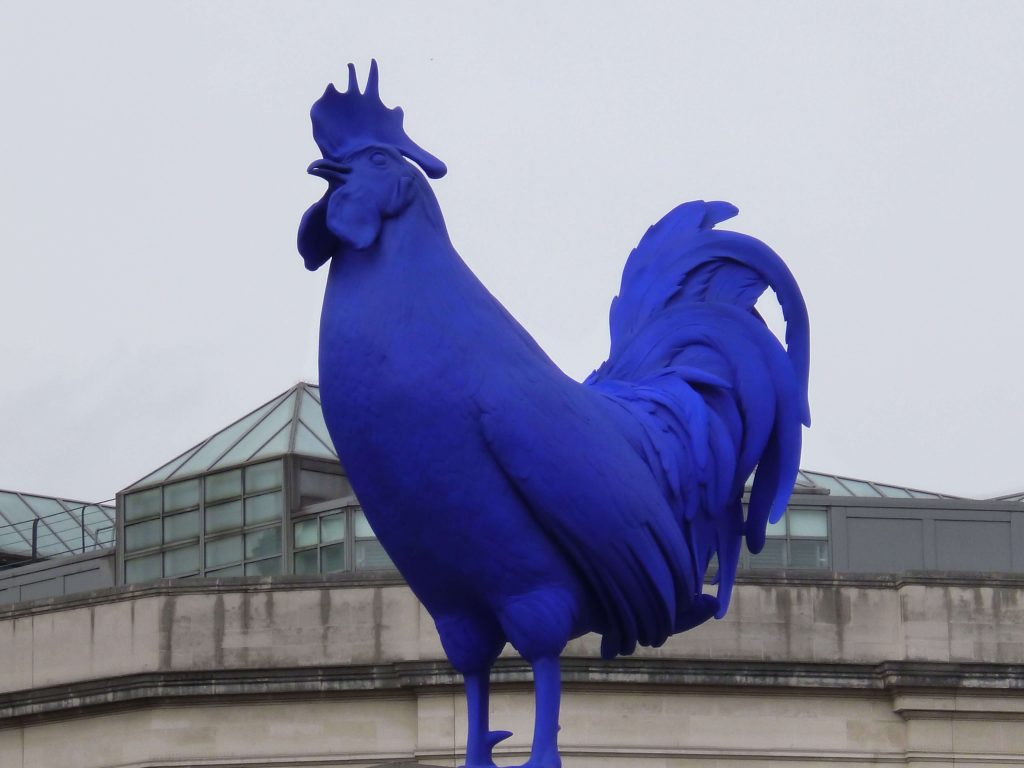 Il Francese è fiero come un gallo