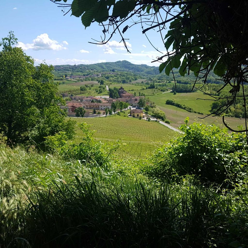 Montferrato_piemonte_vue-min