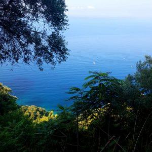 vista meravigliosa sul mare in liguria