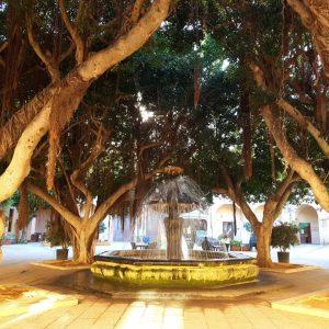 cosa visitare a marsala in sicilia