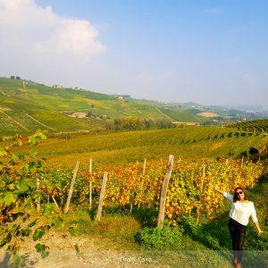 vitigni vicino a Barolo