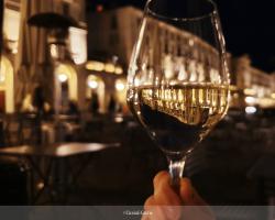 Les vins du Piémont